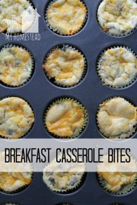 low carb high protein breakfast bites